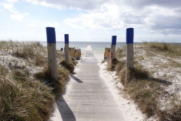 Urlaub zu viert: Zwischen Sonne, Meer und Erdbeerduft