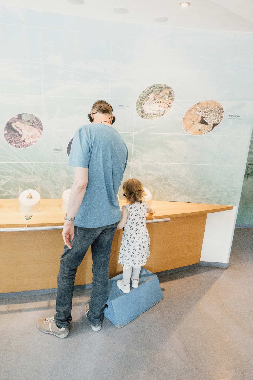 Ausstellung im Nationalpark-Zentrum Königsstuhl