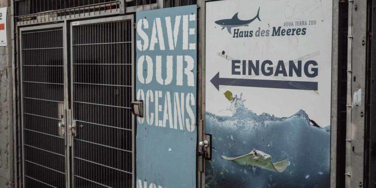 Erfahrungsbericht Haus des Meeres in Wien mit Kleinkind